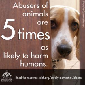 animal-abusers